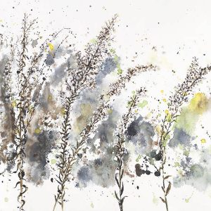 Goldenrod in winter